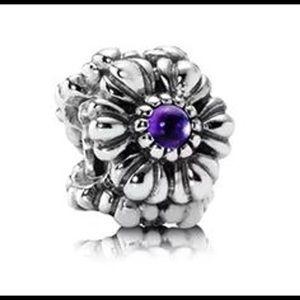 Pandora bracelet & no longer being released charm
